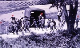 Cây bạch dương thổi bùng xung đột Mỹ - Triều cách đây 40 năm