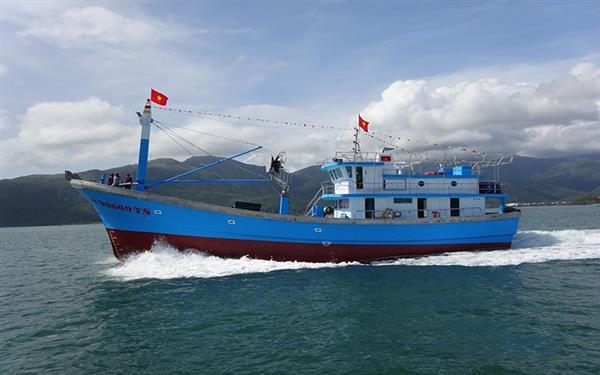 """Rà soát tàu biển thuộc sở hữu Việt Nam """"quên"""" làm thủ tục nhập khẩu"""