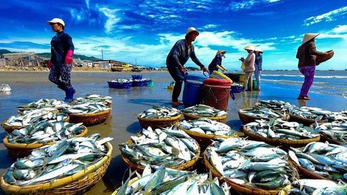 """Khó khăn tháo gỡ """"thẻ vàng"""" cho thủy sản Việt Nam"""