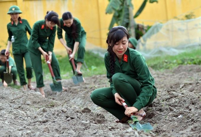 Điều kiện, quyền lợi của nữ giới tham gia nghĩa vụ quân sự