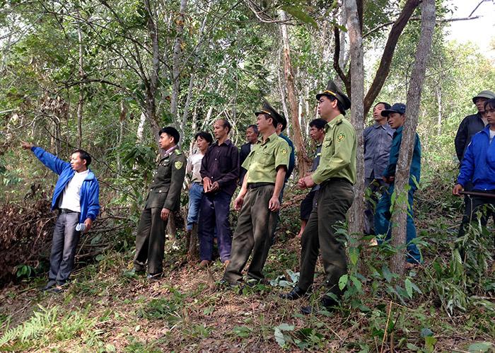 Cần có giải pháp tháo gỡ cho chính sách bảo vệ phát triển rừng