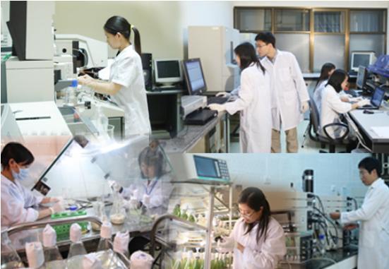 Hoạt động khoa học và công nghệ trong chăn nuôi
