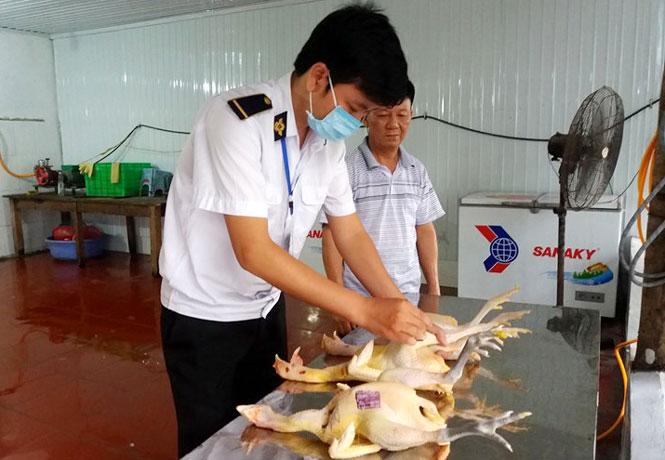 Sau giết mổ các loại gia súc nuôi cần thực hiện khám đầu, phủ tạng