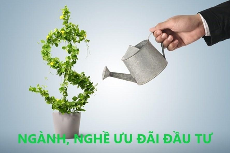Ngành, nghề nào được ưu đãi đầu tư đối với nhà đầu tư nước ngoài?