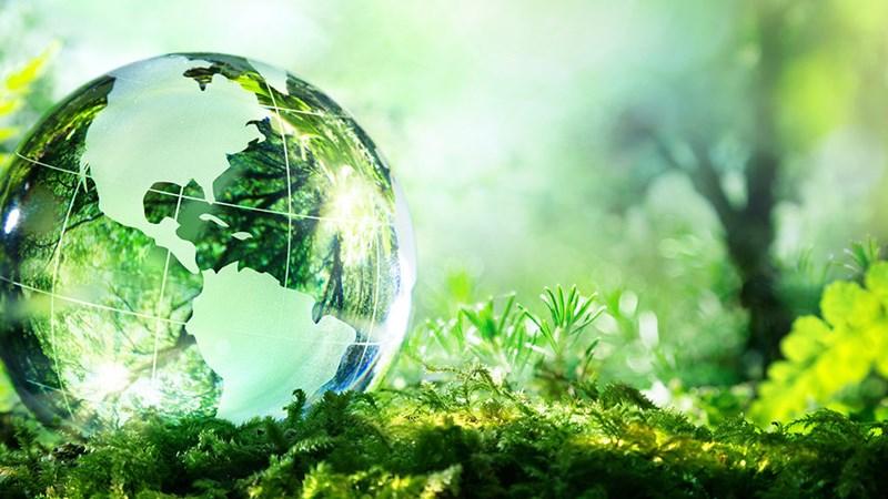 Đề nghị sửa đổi Luật Bảo vệ môi trường