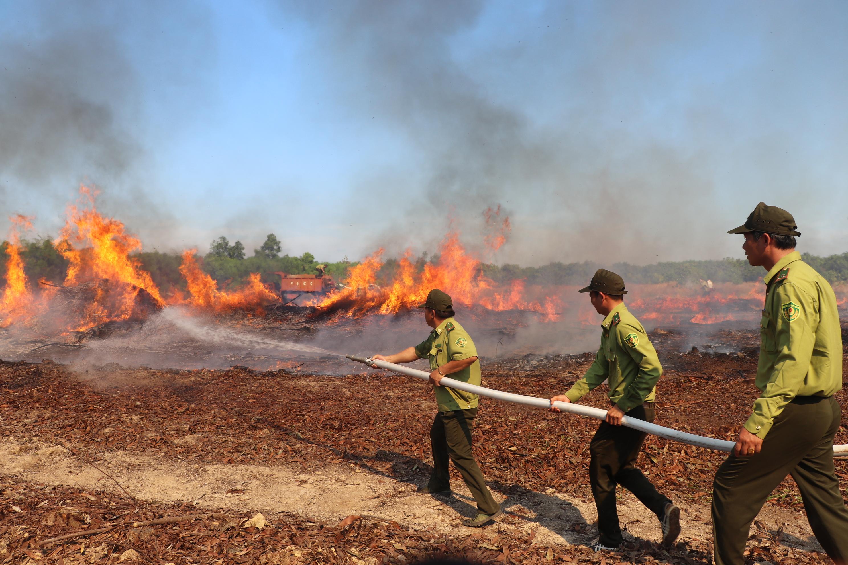 Thông tư 25: Hướng dẫn về việc tiếp nhận, xử lý thông tin cháy rừng