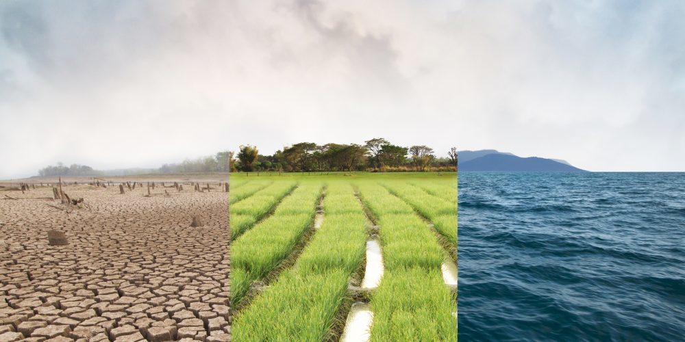 Thông tư 25: Các mẫu thẩm định báo cáo đánh giá tác động môi trường