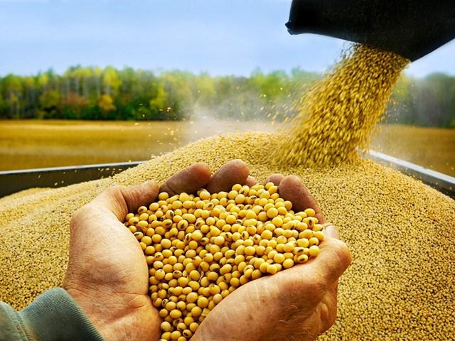 Hồ sơ nhập khẩu thức ăn chăn nuôi chưa công bố trên cổng TTĐT của Bộ