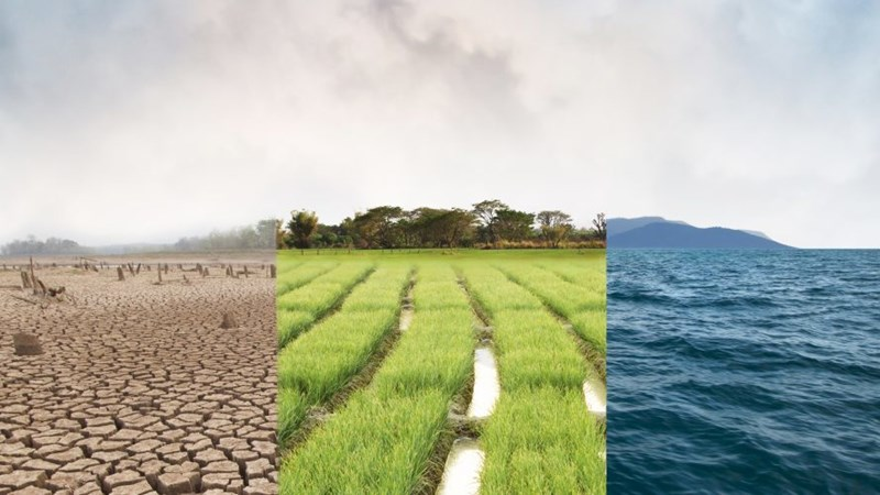 Tổ chức nào thu phí khai thác và sử dụng dữ liệu về môi trường?