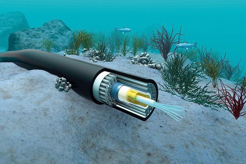 Cáp quang biển AAG lại được sửa chữa, internet gián đoạn - Ảnh 1.