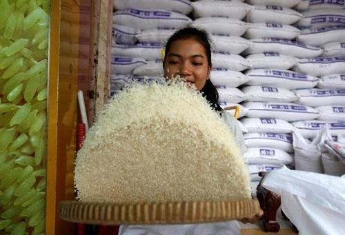 Gạo Campuchia nổi tiếng bởi chất lượng cao.