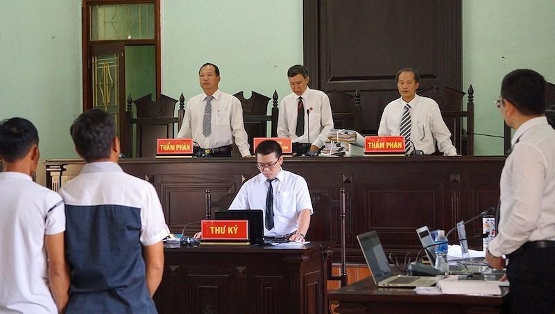 Vụ cưa cây gỗ khô: Các thẩm phán đã hết bệnh  - ảnh 5