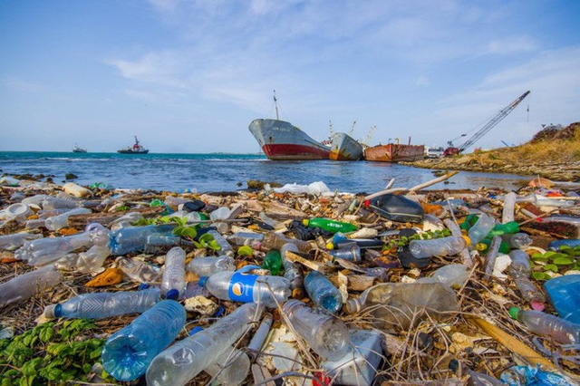 Liên hợp quốc kêu gọi chấm dứt nạn ô nhiễm rác thải lan ra biển - Ảnh 1.