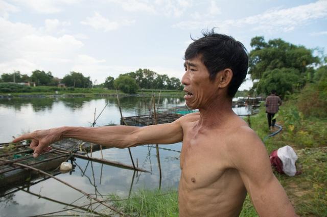 Một ngư dân khóc mếu chỉ vào lồng cá gần như chết sạch của gia đình