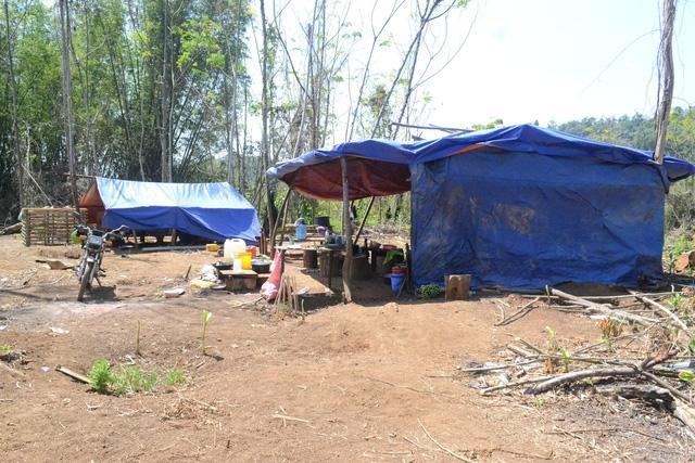 Lán trại của các đối tượng phá rừng ngay trong khu vực được bảo vệ