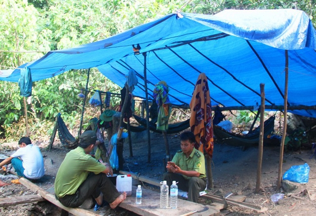 Gần đây trên địa bàn tỉnh Bình Định thường xuyên xảy ra tình trạng lâm tặc tấn công gây thương tích lực lượng kiểm lâm.