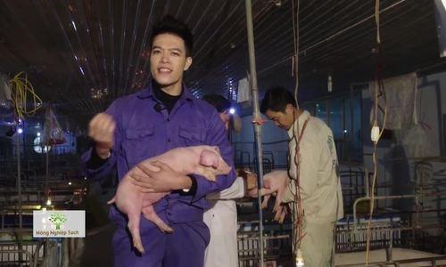 Thịt lợn Yên Bái xuất khẩu đi Lào, Campuchia