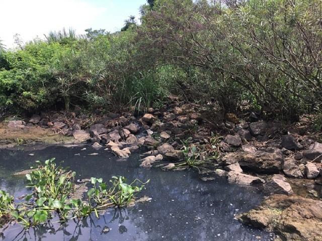 Khu vực nước sông tại điểm nước thải đổ ra có màu đen ngòm.