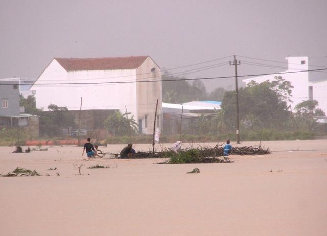 Nhiều người dân lội ra dòng nước lũ vớt củi.