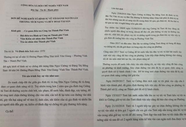 Đơn đề nghị khởi tố vụ án hình sự về tội Cố ý gây thương tích và Hủy hoại tài sản đối với vợ chồng ông Đậu Ngọc Cường và bà Đặng Thị Hồng Tươi.