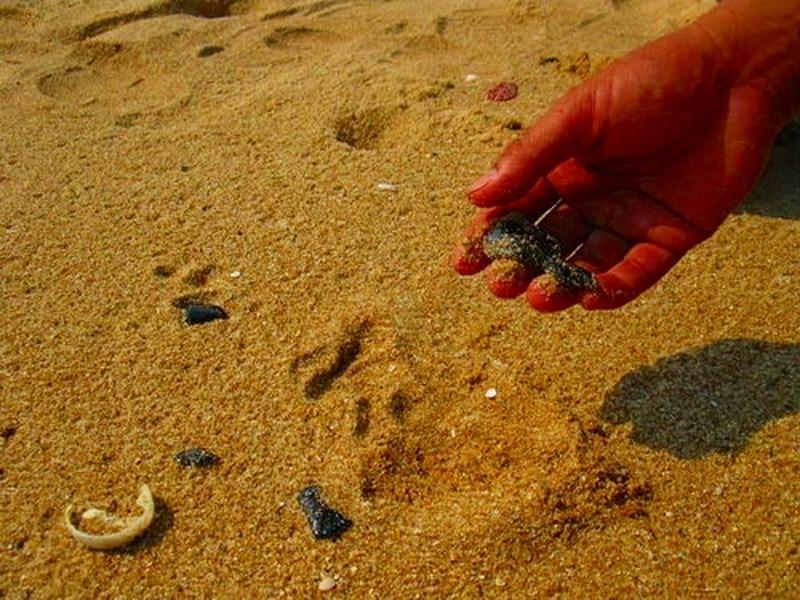 Bình Thuận yêu cầu làm rõ dầu vón cục trôi vào bờ biển - ảnh 1