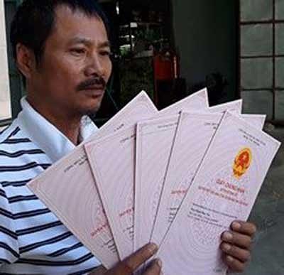 Ninh Thuận: Yêu cầu giải trình vụ ủi vườn dừa - ảnh 2