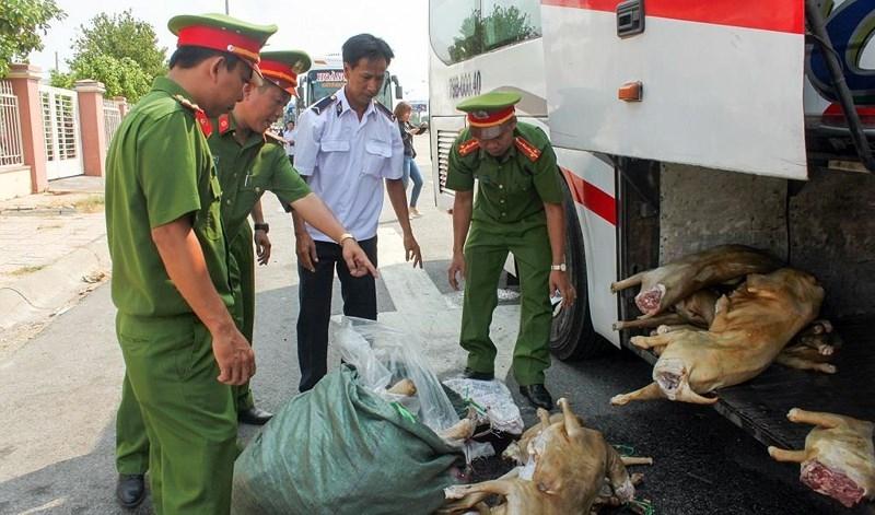 200kg thịt dê không có kiểm dịch trên xe khách - ảnh 2