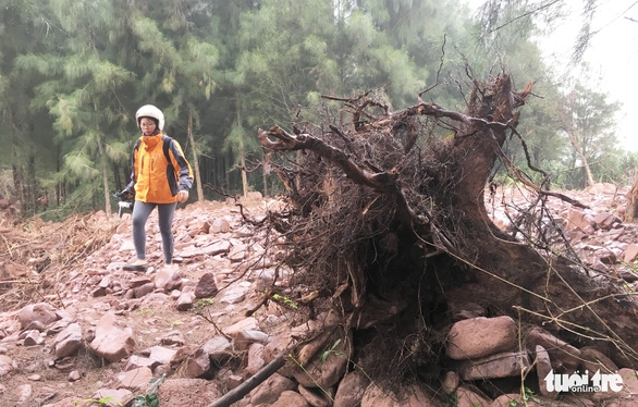 Yêu cầu kiểm điểm vì để dân làm đầm tôm phá rừng phòng hộ - Ảnh 1.