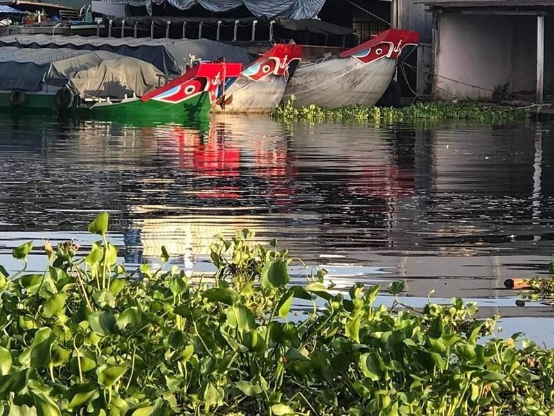 """Bộ Tài nguyên và Môi trường vào cuộc vụ sông """"đen"""" ở Hậu Giang - ảnh 1"""