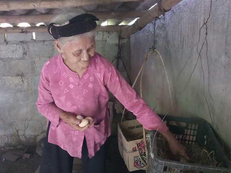 Gặp cụ bà 84 tuổi quyết xin ra khỏi diện hộ nghèo - ảnh 1