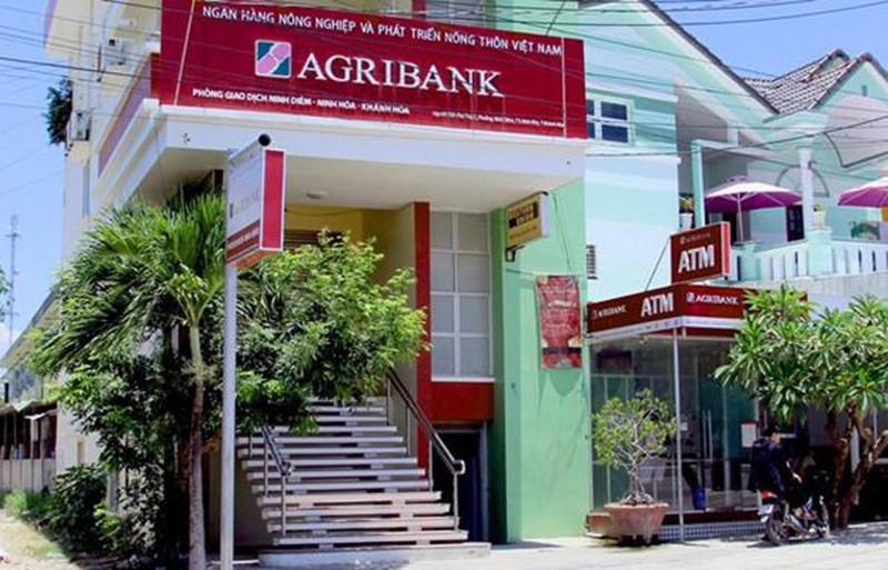 2 cựu lãnh đạo phòng giao dịch ngân hàng ở Khánh Hòa bị bắt  - ảnh 2