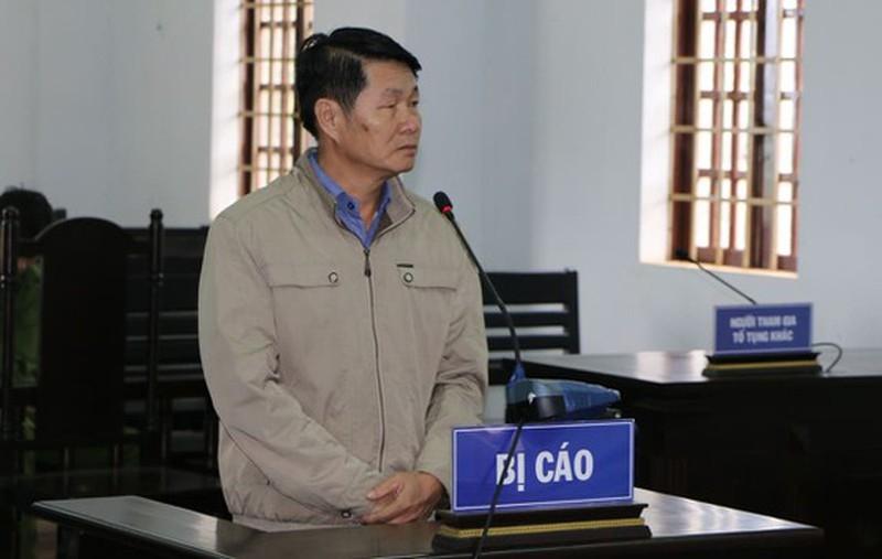 Cựu phó chủ tịch huyện lãnh án tù vì chiếm đất công - ảnh 1