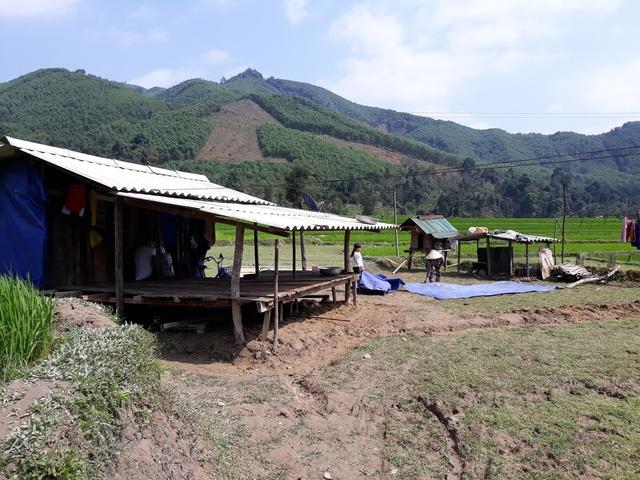 Người dân xã Ba Dinh dựng lều tạm giữa đồng ruộng để có nơi đón Tết