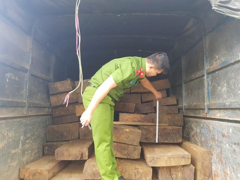 Tháo hết ghế trên ô tô khách để chở gỗ lậu - ảnh 2
