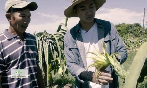 Bình Thuận đẩy mạnh xuất khẩu thanh long