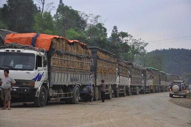 Lạng Sơn giải quyết tình trạng dồn ứ nông sản ở các cửa khẩu - Ảnh 1.
