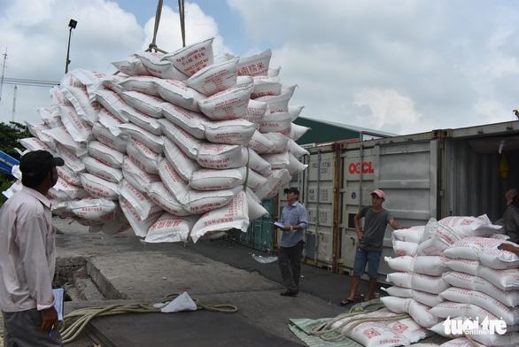 Được xuất khẩu gạo nhưng doanh nghiệp lo đã trễ cơ hội vàng - Ảnh 1.