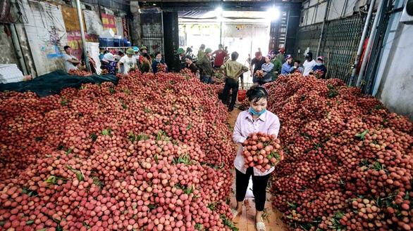 6 tháng đầu năm 2019, nông sản qua Trung Quốc giảm mạnh, tại sao? - Ảnh 1.