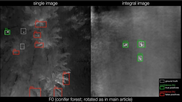 Tìm người lạc trong rừng bằng camera bay tích hợp AI - Ảnh 1.