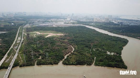 Khởi tố phó tổng giám đốc và 3 cán bộ Công ty Tân Thuận vi phạm chuyển nhượng đất, vốn Nhà nước - Ảnh 1.