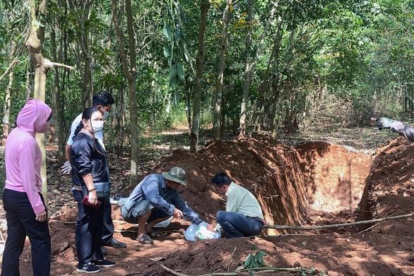 Chủ trại chôn lén 138 con heo trong rừng cao su khai heo bị chết cháy - Ảnh 1.