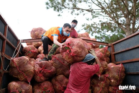 TP.HCM đã đón nhận hơn 5.500 tấn nông sản sạch Lâm Đồng gửi tặng - Ảnh 4.