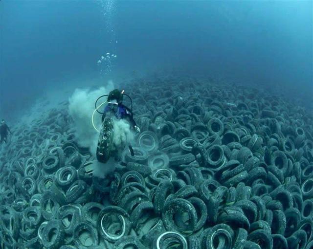 Nghĩa địa bánh xe dưới đáy biển mà bạn thấy trong hình, chính là sản phẩm của một dự án môi trường thất bại, vào thập niên 70 của thế kỷ trước. Ở thời điểm đó, ý tưởng được đưa ra là tạo môi trường sống cho các loài cá bằng lốp xe cũ. Tuy nhiên, sau một thời gian, thảm họa đã xảy ra khi số lốp xe này bị phân rã, các mảnh vụn của nó trở thành mối đe dọa cho môi trường biển, đặc biệt là các rạn san hô.