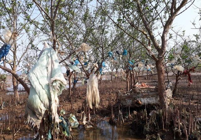 Thực trạng rác thải tấn công rừng phòng hộ nơi đây đang trở nên rất báo động, vượt khỏi khả năng kiểm soát của chính quyền địa phương. Để giải quyết vấn đề này, cần sự vào cuộc của các ngành chức năng và sự chung tay của cả cộng đồng