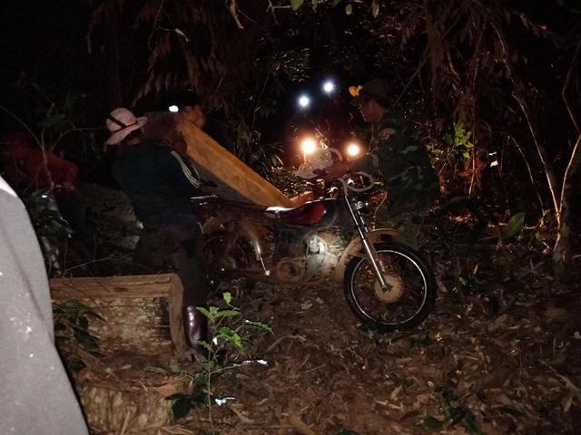 Hiện trường vụ bắt quả tang nhóm thanh niên khai thác gỗ