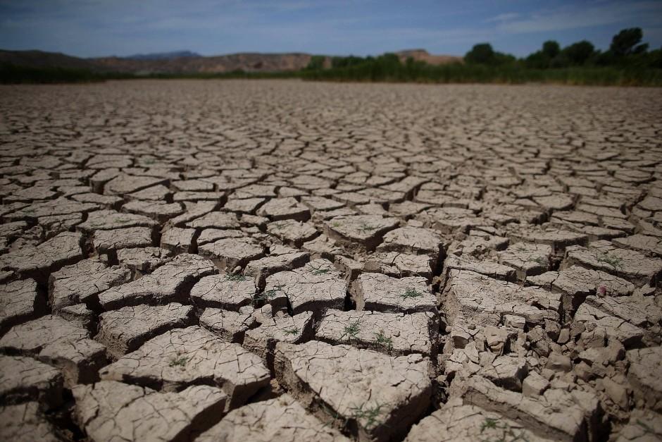 Đất bị thoái hóa là gì? Có những mức độ thoái hoá đất nào?