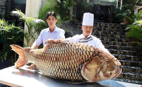 Thời gian nào được đánh bắt khai thác cá Ét Mọi trong năm?