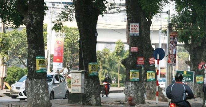 Mức phạt đối với hành vi treo biển quảng cáo vào cây xanh ở đường phố, công viên trái quy định