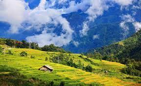 Bồi thường về đất khi Nhà nước thu hồi đất ở của người Việt Nam định cư ở nước ngoài?
