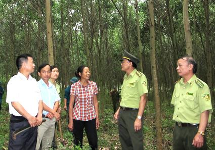 Nguồn tài chính hình thành Quỹ bảo vệ và phát triển rừng được quy định như thế nào?